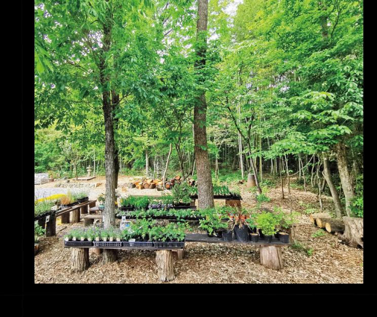 庭処西村造園が手掛ける庭木・花の店  千花「ちはな」。