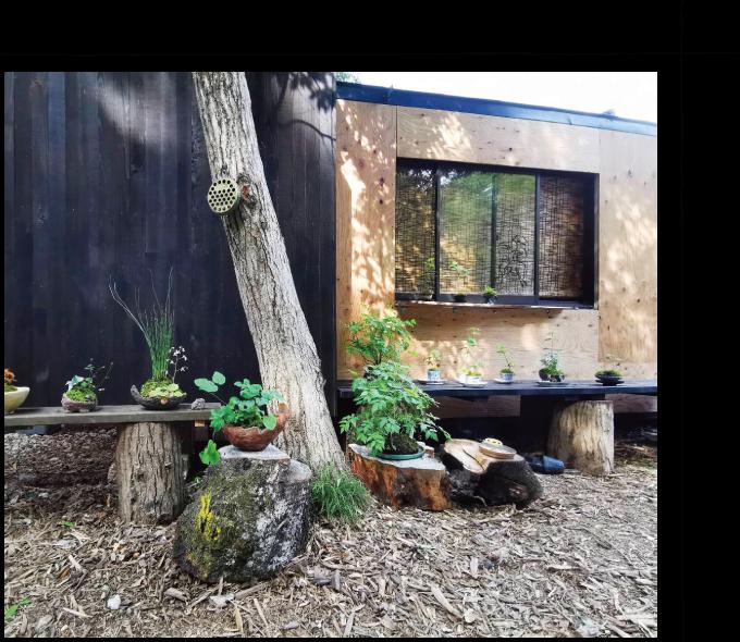 庭処西村造園が手掛ける庭木・花の店  千花「ちはな」